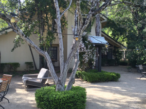 Bungalows 313/Sonoma/March 2015